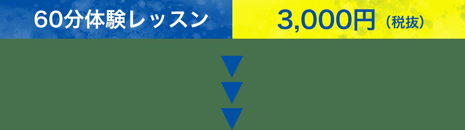 60分体験レッスン|3,000円(税抜)